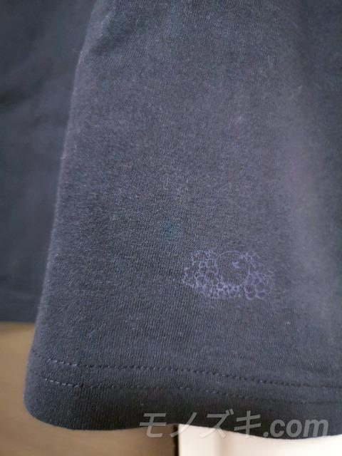 フルーツオブザルーム パックT 裾ロゴ