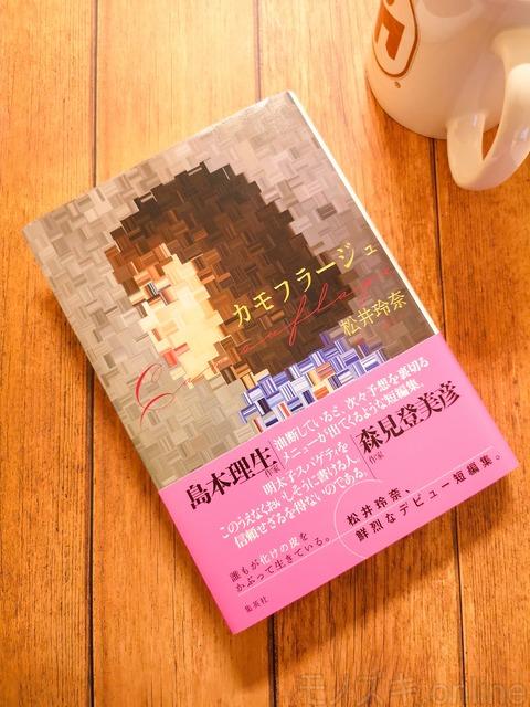 松井玲奈著「カモフラージュ」 表紙